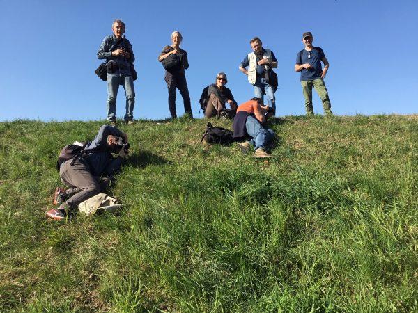 Des botanistes en herbe !